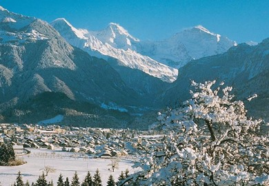 Interlaken In Winter
