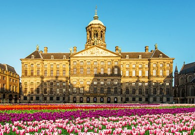 Amsterdam Royal Palace Tulips