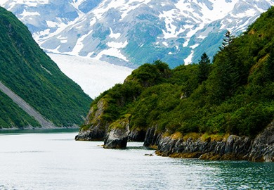 Glaciers and Fjords in Alaska