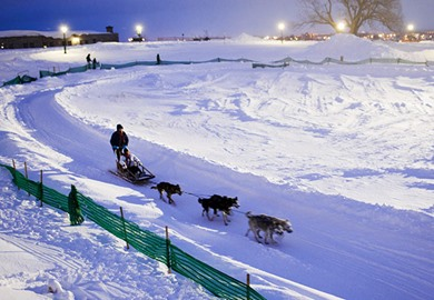 Dogsledding At Winter Carnival